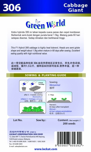 GW306 Cabbage - Giant2