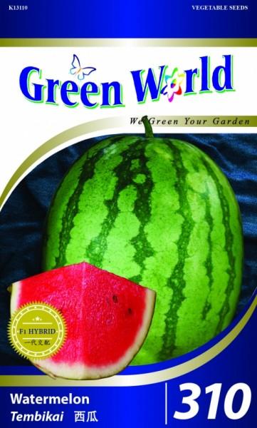 GW310 Watermelon - Red Rocky1