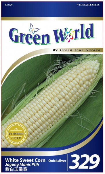 GW329 White Sweet Corn - Quicksilver1